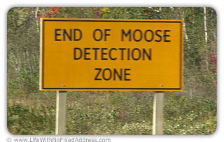 You've Just Crossed Over Into...The Moose Zone